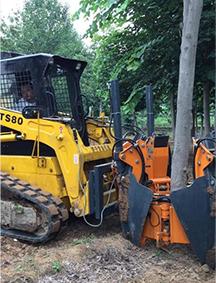 履带乔木挖树机